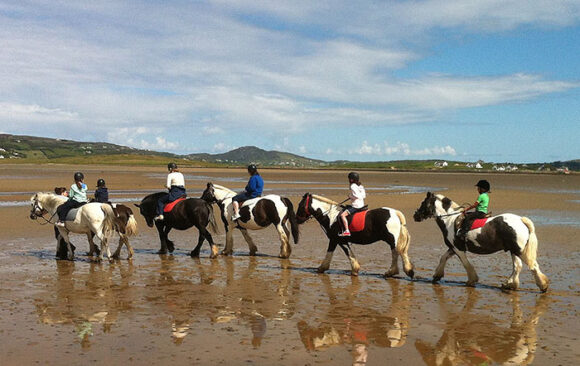 Carrigart Riding Stables